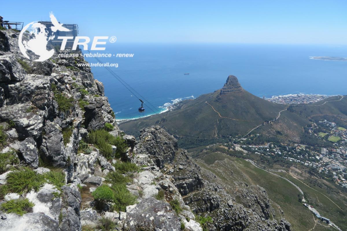 Table Bay -TRE Providers